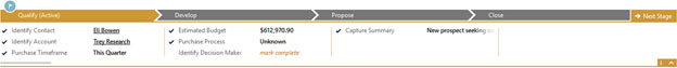 Screenshot showing new process par in Dynamics CRM 2013