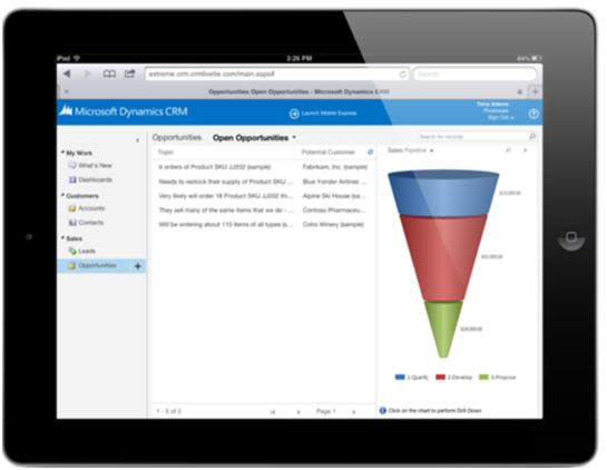 Microsoft Dynamics CRM 2013 - Mobile