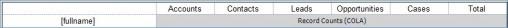 Microsoft Dynamics CRM Record Count Reports 4