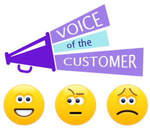 14 Things We Love About Voice of the Customer Surveys - CRM ...
